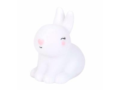 101318_01_ALLC - little light bunny.jpg