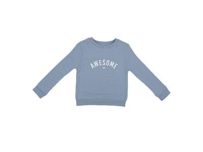 100388_01_sweater steel - awesome.jpg