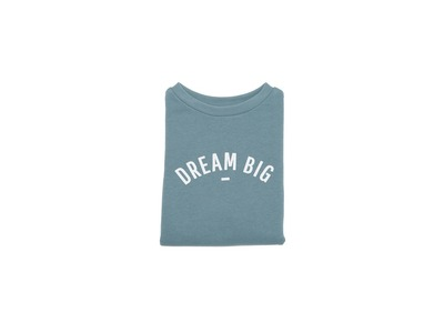 100391_02_sweater slate grey - dream big.jpg
